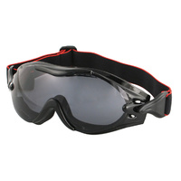 PHOENIXOTG INTERCHANGEABLE GOGGLE 3 SETS OF LENSES BOBSTER EYEWEAR