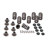 S&S Cycle SS900-0958 Heavy Duty Valve Spring Kit M8'17up .605